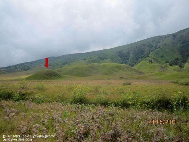 Itu bukit teletubbies yang paling make sense untuk dikunjungi. Keknya deket ya, tapi jalan udah ngos2an kok ga sampe2, heu..