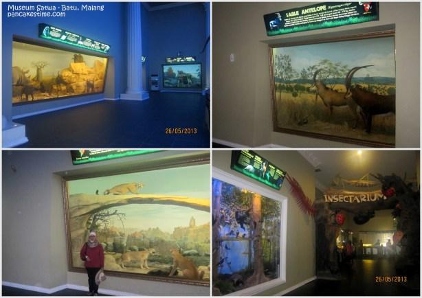 Diorama di Museum Satwa, Batu Malang