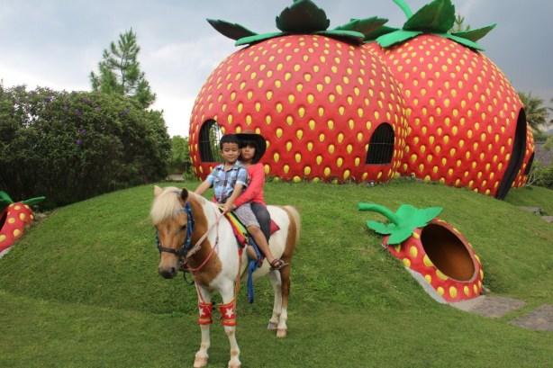 Berusaha menghibur bocah yang kelaparan dengan main kuda. Main kuda udah, main petak umpet udah, sholat udah dan makanan masih belum datang :(